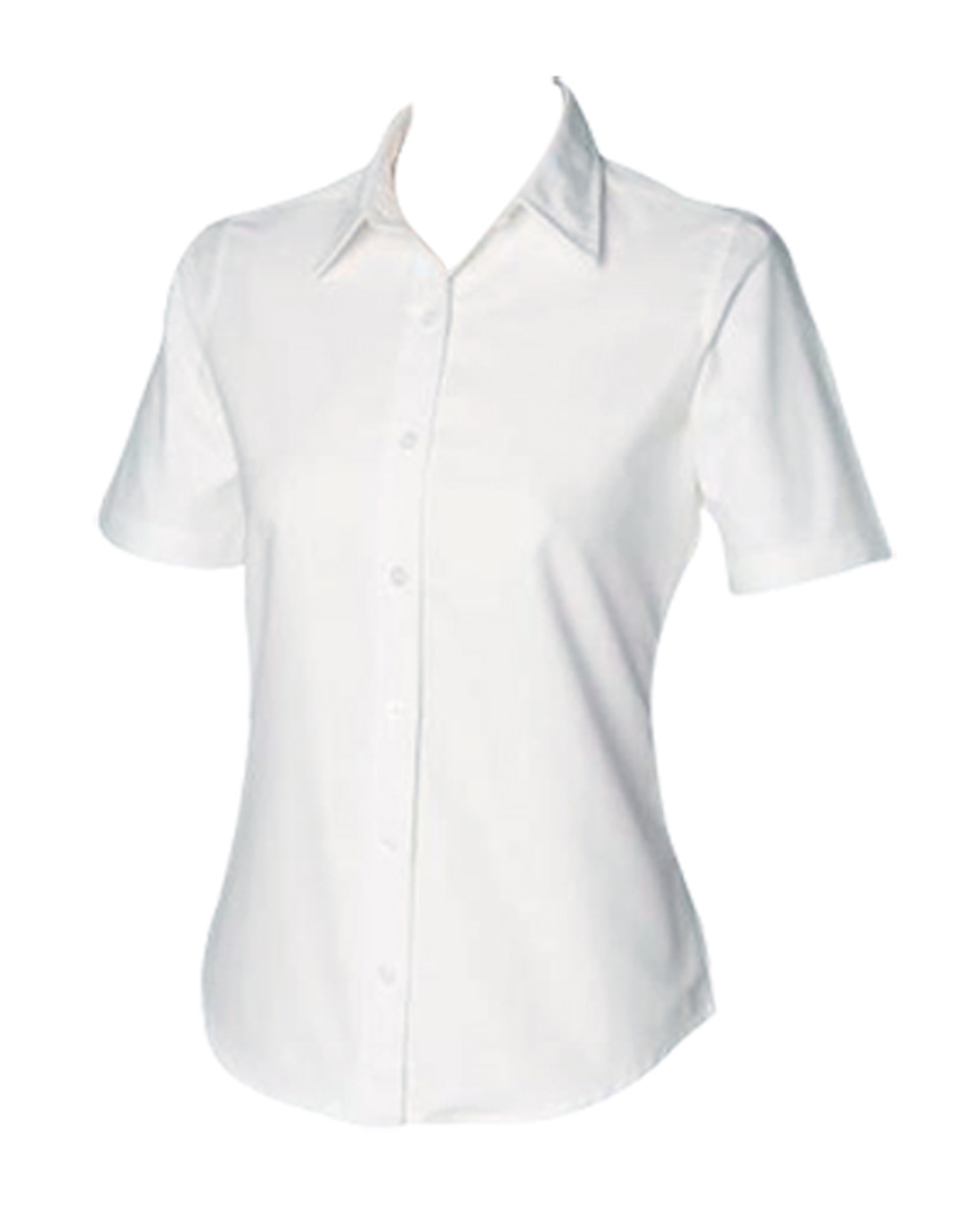 Ladies Short Sleeve Oxford - Code 66444